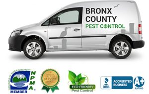 Bronx County Pest Control Van